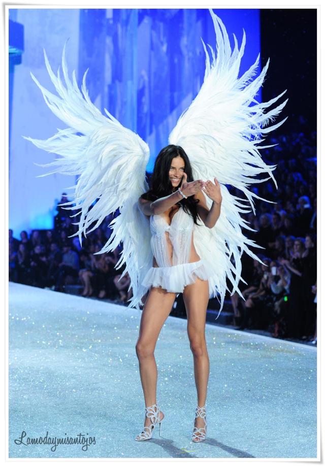 victorias-secret-fashion-show-2013-34