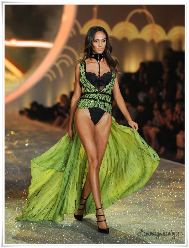 victorias-secret-fashion-show-2013-35