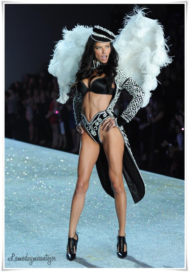 victorias-secret-fashion-show-2013-40