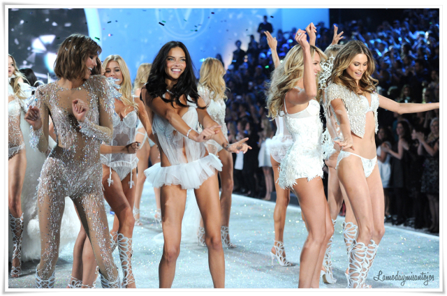 victorias-secret-fashion-show-2013-6