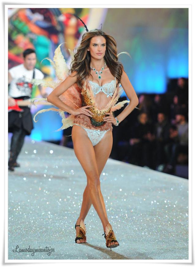 victorias-secret-fashion-show-2013-9
